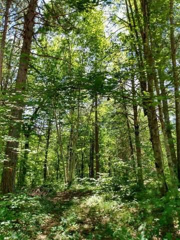 W1561 Hawks Nest Trail, Keshena, WI 54135 (#50244318) :: Carolyn Stark Real Estate Team