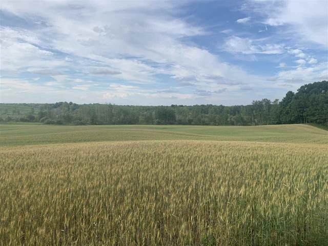 Old 47 Road, Pulaski, WI 54162 (#50246055) :: Symes Realty, LLC