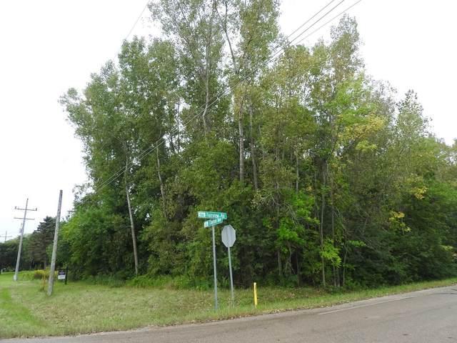 Clayton Avenue, Neenah, WI 54956 (#50247171) :: Symes Realty, LLC