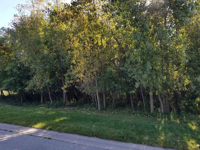 Natures Lane, Appleton, WI 54914 (#50249184) :: Todd Wiese Homeselling System, Inc.