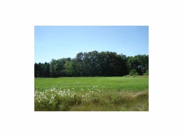 Lakeview Way #33, Bonduel, WI 54107 (#50116542) :: Symes Realty, LLC
