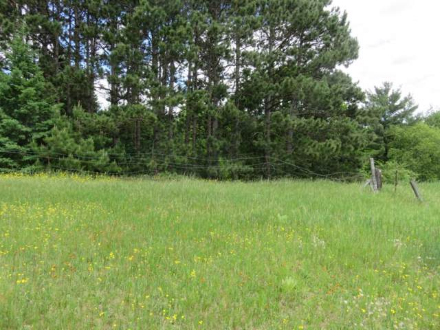 Rose Brook Rd Road, Shawano, WI 54166 (#50151954) :: Dallaire Realty