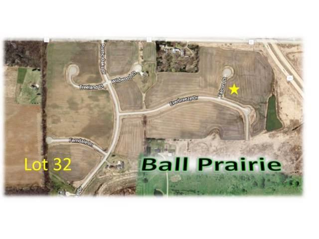 Falcon Court #32, Winneconne, WI 54986 (#50154571) :: Ben Bartolazzi Real Estate Inc