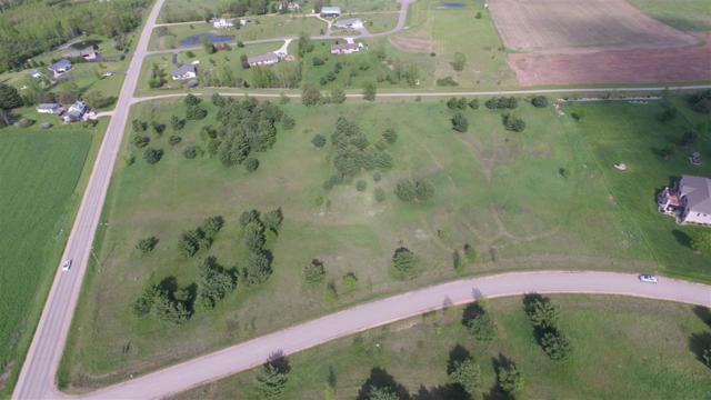 Oak View Drive, Shawano, WI 54166 (#50155311) :: Symes Realty, LLC