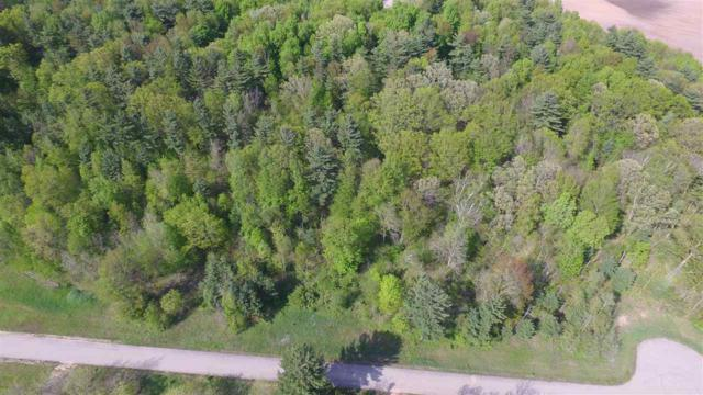 Lime Ridge Road #30, Shawano, WI 54166 (#50155315) :: Todd Wiese Homeselling System, Inc.