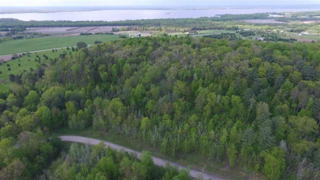 Lime Ridge Road #35, Shawano, WI 54166 (#50155322) :: Todd Wiese Homeselling System, Inc.