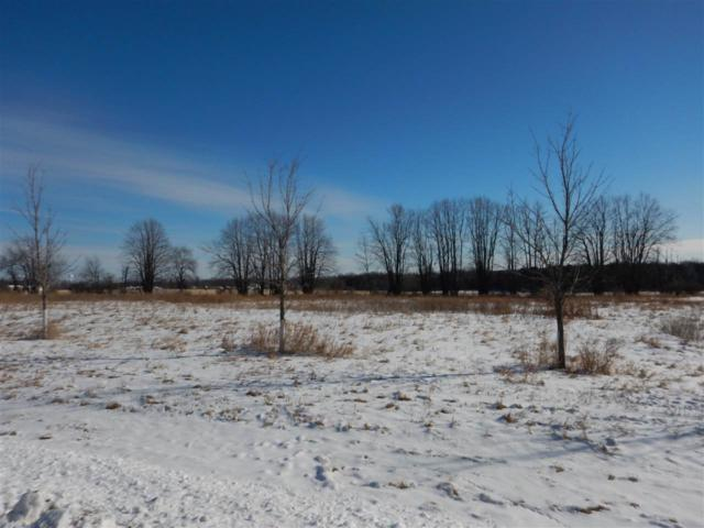 Anderley Lane #2, Lena, WI 54139 (#50160966) :: Todd Wiese Homeselling System, Inc.