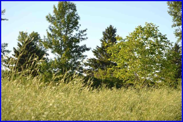 Golf View Lane, Sturgeon Bay, WI 54235 (#50162400) :: Dallaire Realty