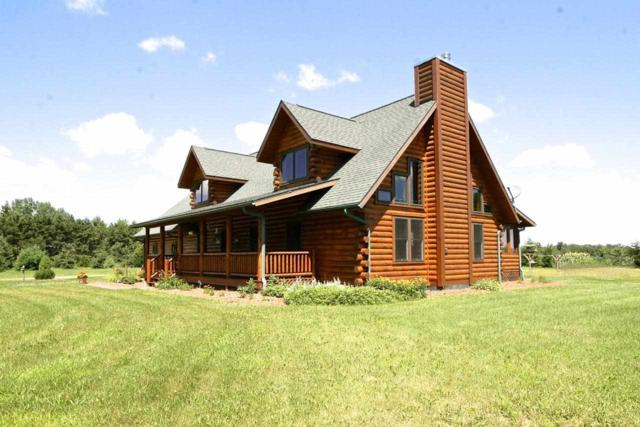 N7141 17TH Drive, Wild Rose, WI 54984 (#50169123) :: Dallaire Realty