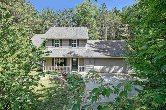 1172 Riverwood Lane, Sobieski, WI 54171 (#50205326) :: Symes Realty, LLC