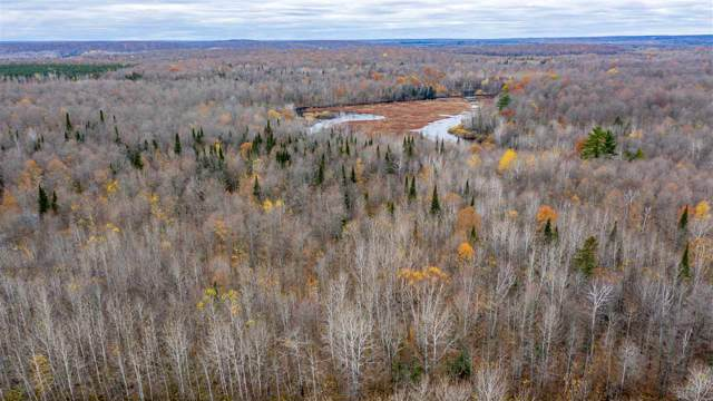 Neal Road, Crandon, WI 54520 (#50212340) :: Todd Wiese Homeselling System, Inc.