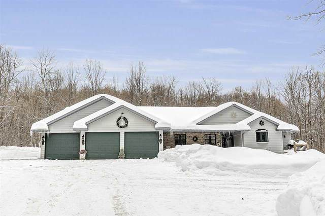 N9684 Connors Drive, Wabeno, WI 54566 (#50213364) :: Todd Wiese Homeselling System, Inc.