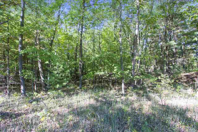 3222 Anston Road, Suamico, WI 54313 (#50215260) :: Town & Country Real Estate