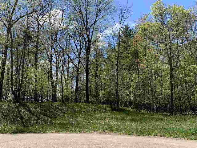 Oak View Drive, Shawano, WI 54166 (#50218075) :: Todd Wiese Homeselling System, Inc.