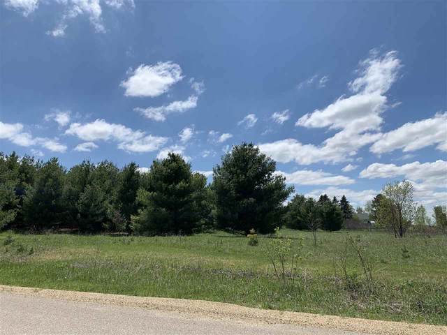 Oak View Drive, Shawano, WI 54166 (#50218077) :: Todd Wiese Homeselling System, Inc.
