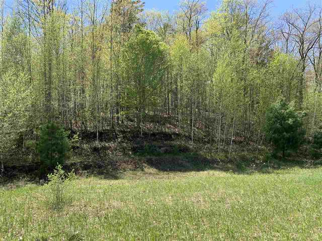 Oak View Drive, Shawano, WI 54166 (#50218080) :: Town & Country Real Estate