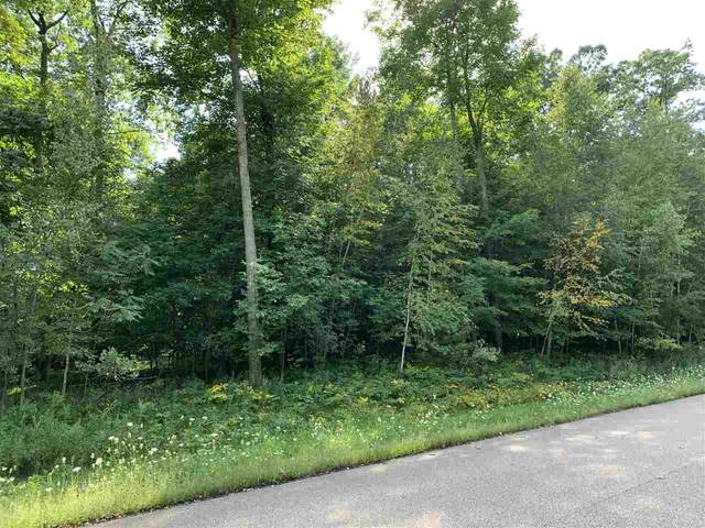 Oak View Drive, Shawano, WI 54166 (#50218168) :: Town & Country Real Estate