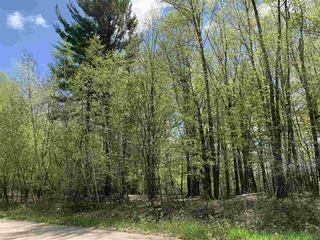 Oak View Drive, Shawano, WI 54166 (#50218169) :: Town & Country Real Estate