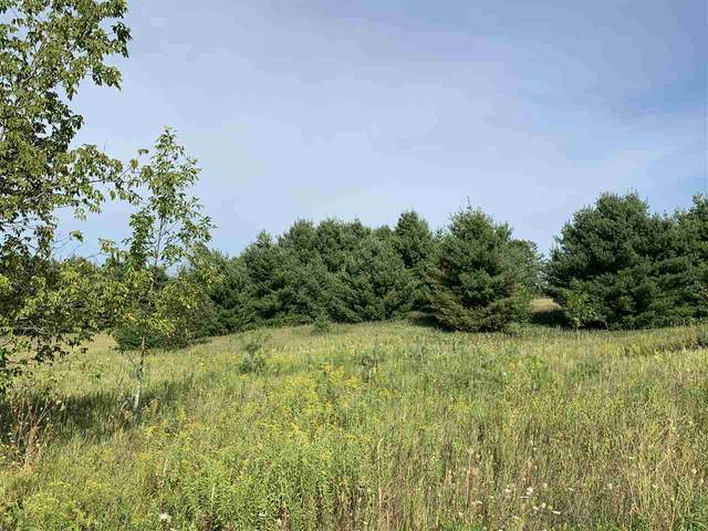Oak View Drive, Shawano, WI 54166 (#50218174) :: Dallaire Realty