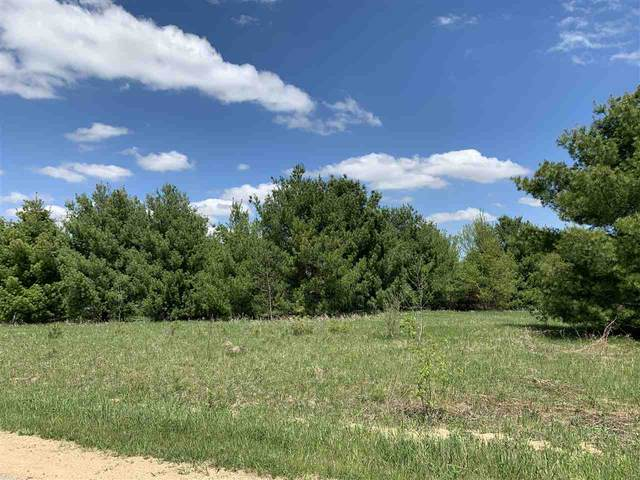 Oak View Drive, Shawano, WI 54166 (#50218222) :: Town & Country Real Estate