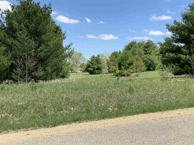 Oak View Drive, Shawano, WI 54166 (#50218224) :: Town & Country Real Estate