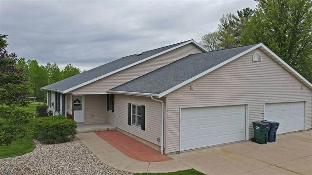 217 Prairie View Court, Waupaca, WI 54981 (#50218365) :: Todd Wiese Homeselling System, Inc.