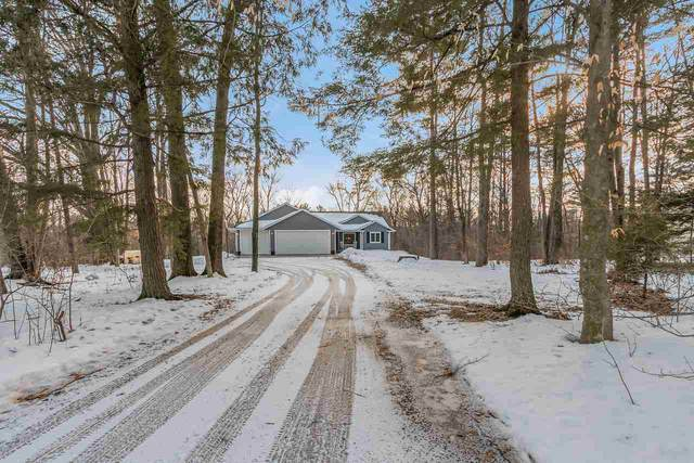 N6051 Opperman Way, Shawano, WI 54166 (#50218539) :: Todd Wiese Homeselling System, Inc.