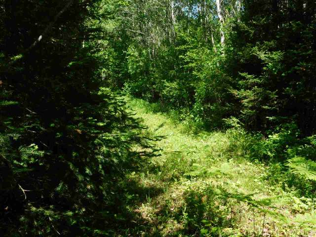 Hwy 139, Argonne, WI 54511 (#50223396) :: Town & Country Real Estate