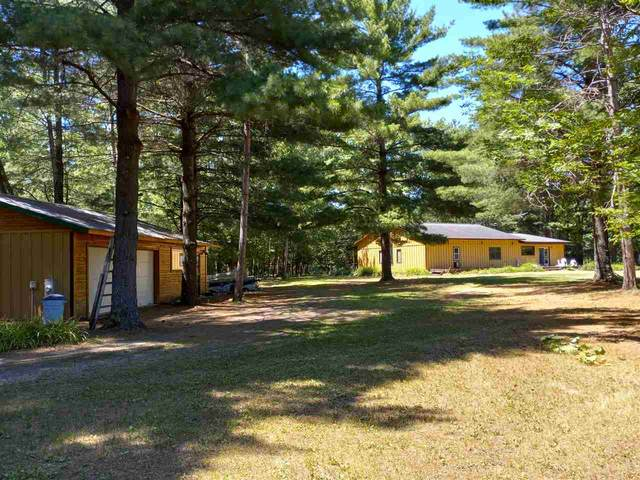 W11382 Riverside Road, Marion, WI 54950 (#50242538) :: Todd Wiese Homeselling System, Inc.