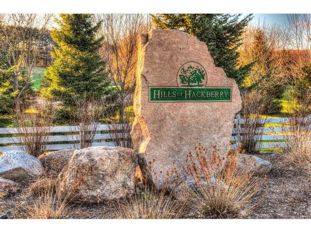 Grandview Road #8, Hortonville, WI 54944 (#50153308) :: Dallaire Realty