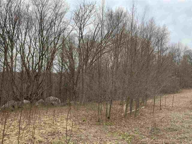 Thornapple Drive #8, Wittenberg, WI 54499 (#50158312) :: Dallaire Realty