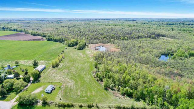 Tappa Road, Lena, WI 54139 (#50184415) :: Dallaire Realty
