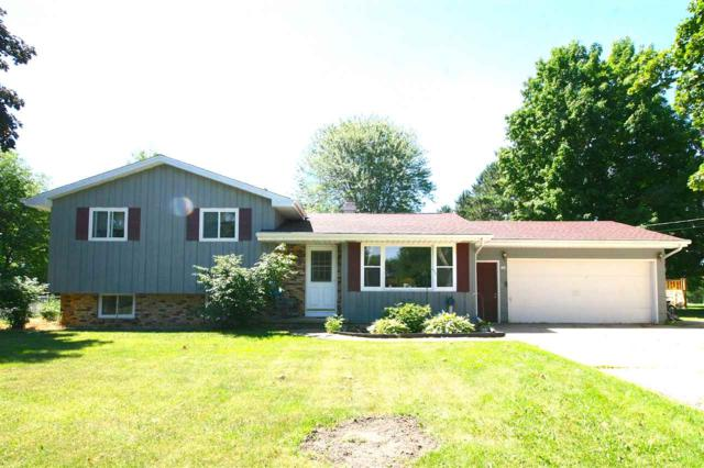 223 Dorothy Drive, Manawa, WI 54949 (#50186391) :: Dallaire Realty