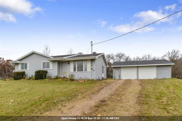 E5604 Little River Road, Weyauwega, WI 54983 (#50194424) :: Dallaire Realty