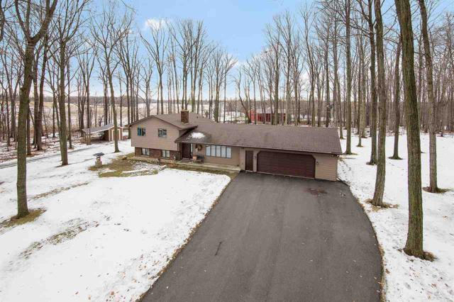 4200 Birch Tree Circle, New Franken, WI 54229 (#50196500) :: Todd Wiese Homeselling System, Inc.