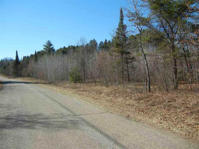 14 Acres Blueberry Point Road, Dunbar, WI 54119 (#50187488) :: Todd Wiese Homeselling System, Inc.