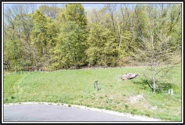 Winds Way Court, Fremont, WI 54940 (#50230254) :: Carolyn Stark Real Estate Team