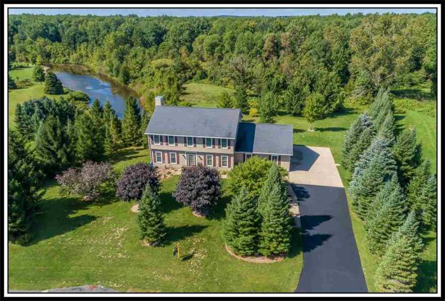 W9264 Lamise Way, Hortonville, WI 54944 (#50182795) :: Symes Realty, LLC