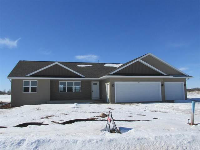569 Pauls Place, Oshkosh, WI 54904 (#50216297) :: Todd Wiese Homeselling System, Inc.