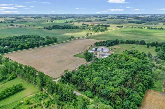 N9366 Hickory Road, Pickett, WI 54964 (#50243754) :: Symes Realty, LLC