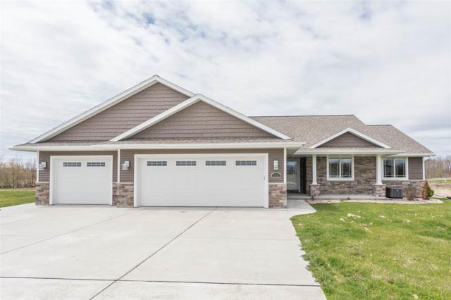 6690 Elmro Road, Greenleaf, WI 54126 (#50202114) :: Todd Wiese Homeselling System, Inc.