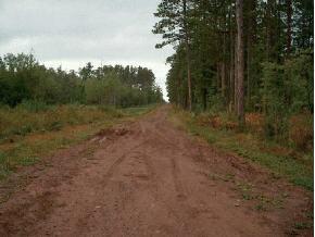Dark Corner Road, Ashland, WI 54806 (#2030284) :: Dallaire Realty