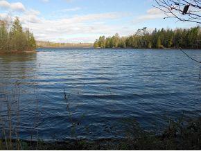 Bear Lake Rd #17, Wabeno, WI 54566 (#50042719) :: Dallaire Realty