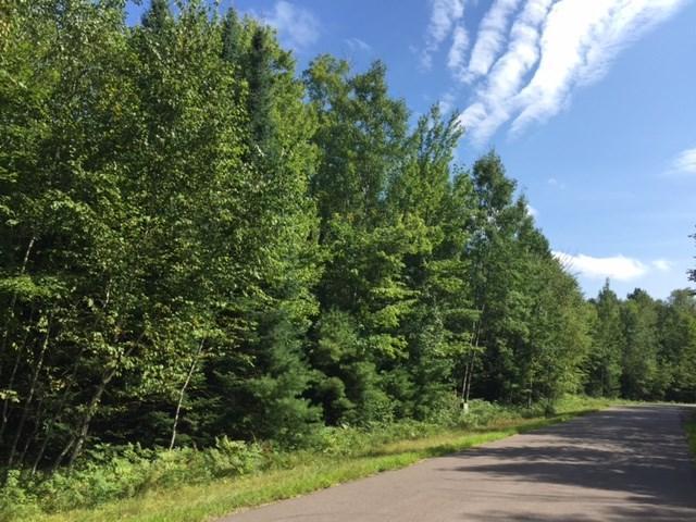 Definn Drive, Mountain, WI 54149 (#50170072) :: Symes Realty, LLC