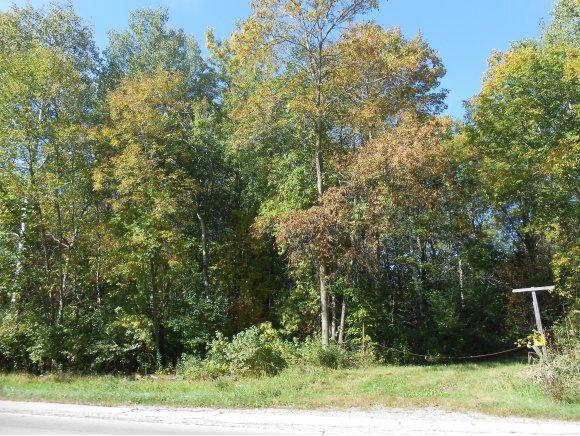 Lakeview Drive, Suamico, WI 54173 (#50174226) :: Dallaire Realty