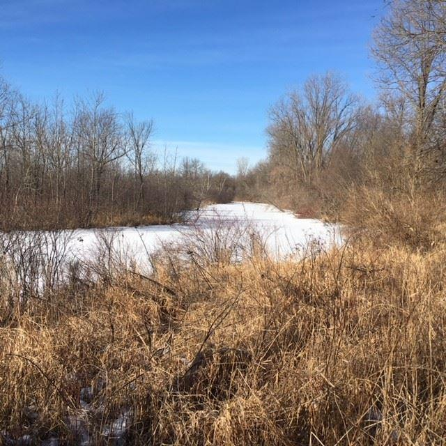 W2877 Beechnut Road, Pine River, WI 54965 (#50177055) :: Dallaire Realty