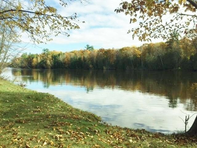 Park Drive, Porterfield, WI 54159 (#50180578) :: Symes Realty, LLC