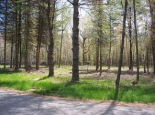 Edwards Avenue, Marinette, WI 54143 (#50181470) :: Dallaire Realty