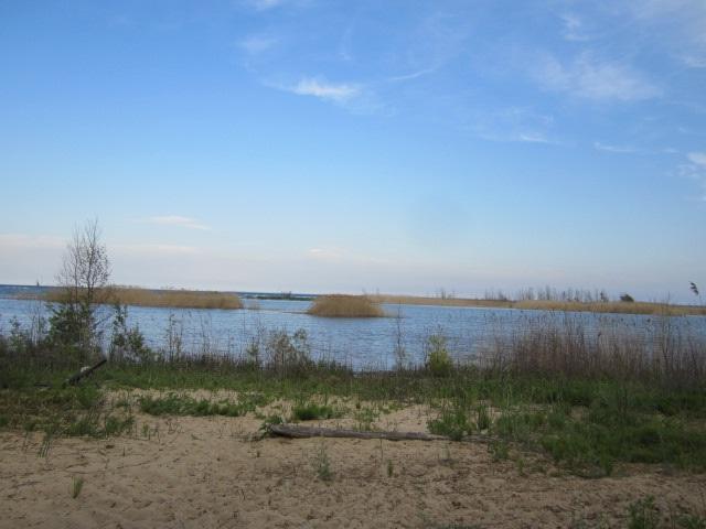 N7310 Hwy M-35, Cedar River, MI 49887 (#50181584) :: Dallaire Realty