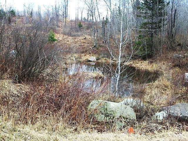Nolting Lane, Mountain, WI 54149 (#50184396) :: Symes Realty, LLC